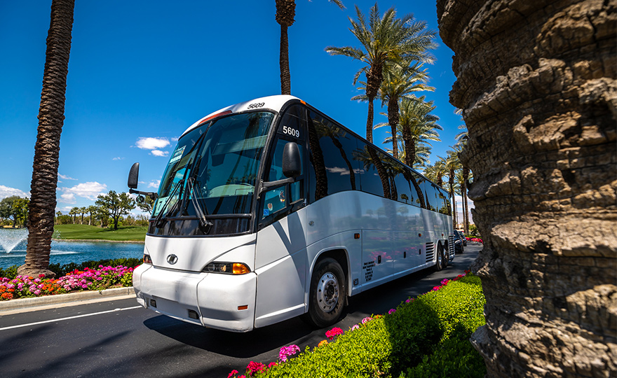 Coachella 2020   Shuttle Passes   Any Line and LAX